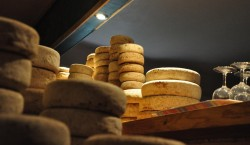 Goat cheese at Kumparicka
