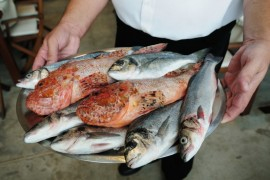 Platter of fish