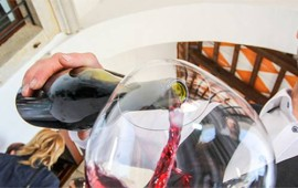 Tilia winery Slovenia - get the party started