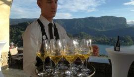 farewell dinner at Bled Castle