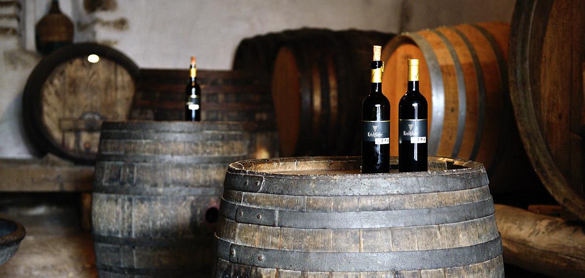 Goriska Brda wine cellar - Harvest Tour